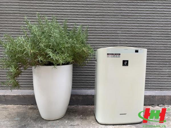 Máy lọc không khí Sharp bù ẩm KC-Z (hàng nội địa Nhật)